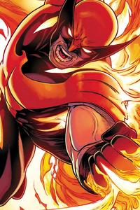 240x320 Wolverine Phoenix Variant 4k