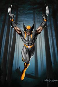 800x1280 Wolverine Rage 8k