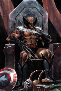 Wolverine Sitting On Throne