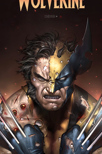 Wolverine Sketch Art 4k