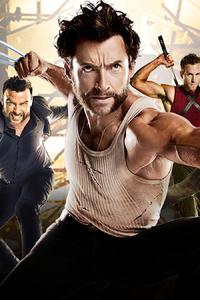 Wolverine Team