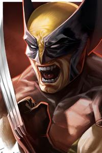 Wolverine4kart