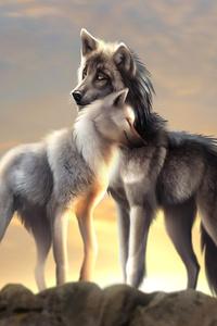 Wolves Love