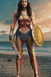 480x854 Wonder Woman 2020 Gal