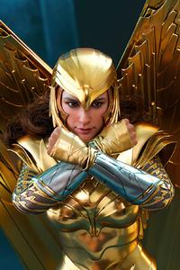 1440x2560 Wonder Woman 84 Armor