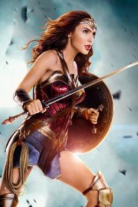 Wonder Woman Warrior Arts