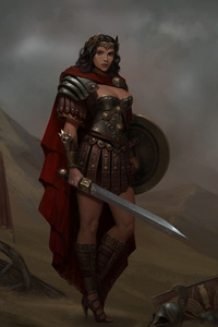 Wonder Woman Warrior Artwork