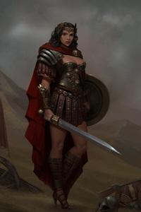 720x1280 Wonder Woman Warrior Artwork