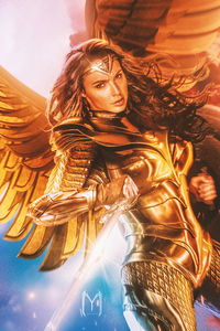 1080x2280 Wonder Woman Wings