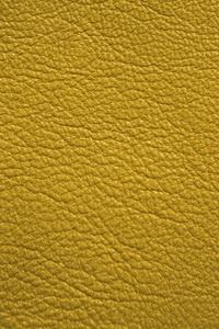 Yellow Leather 5k