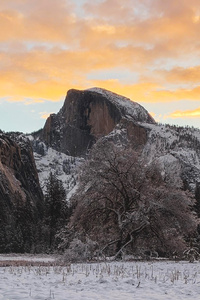 480x800 Yosemite Sunrise