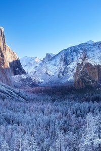 320x480 Yosemite Winter Morning 4k