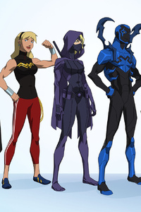 Young Justice Outsiders 2017