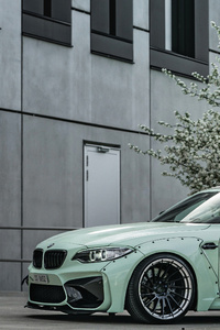 Z Performance BMW M2 2018 4k