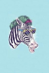 320x480 Zebra Minimalism