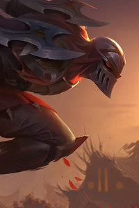 Zed Warrior 4k