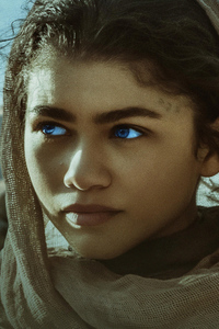 1080x2160 Zendaya As Chani In Dune Movie